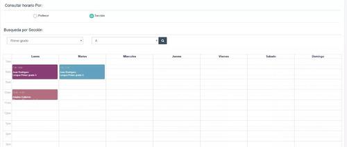 sistema de gestión para escuelas, liceos, otros. plan anual