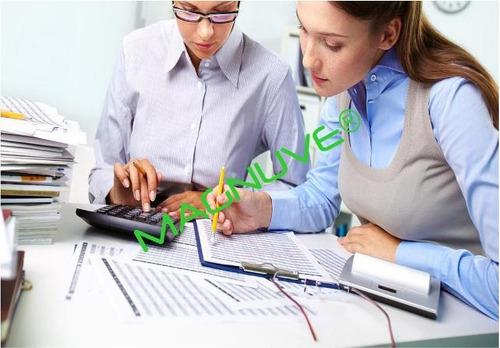sistema excel contable contabilidad empresas negocios cuenta