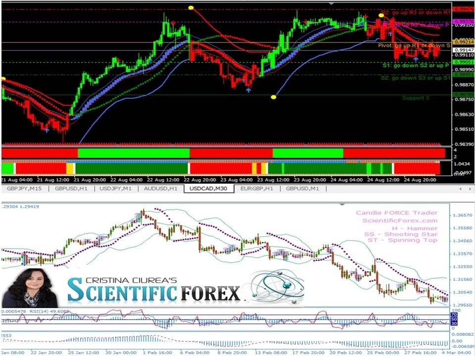 Golden compass forex united world capital forex