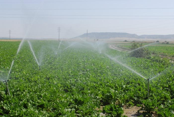 Sistemas de riego por aspersi n microaspersion y goteo for Sistema de riego por aspersion para jardin