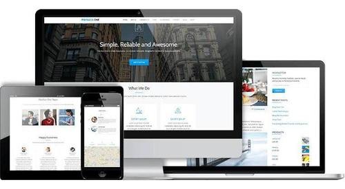 site wordpress profissional