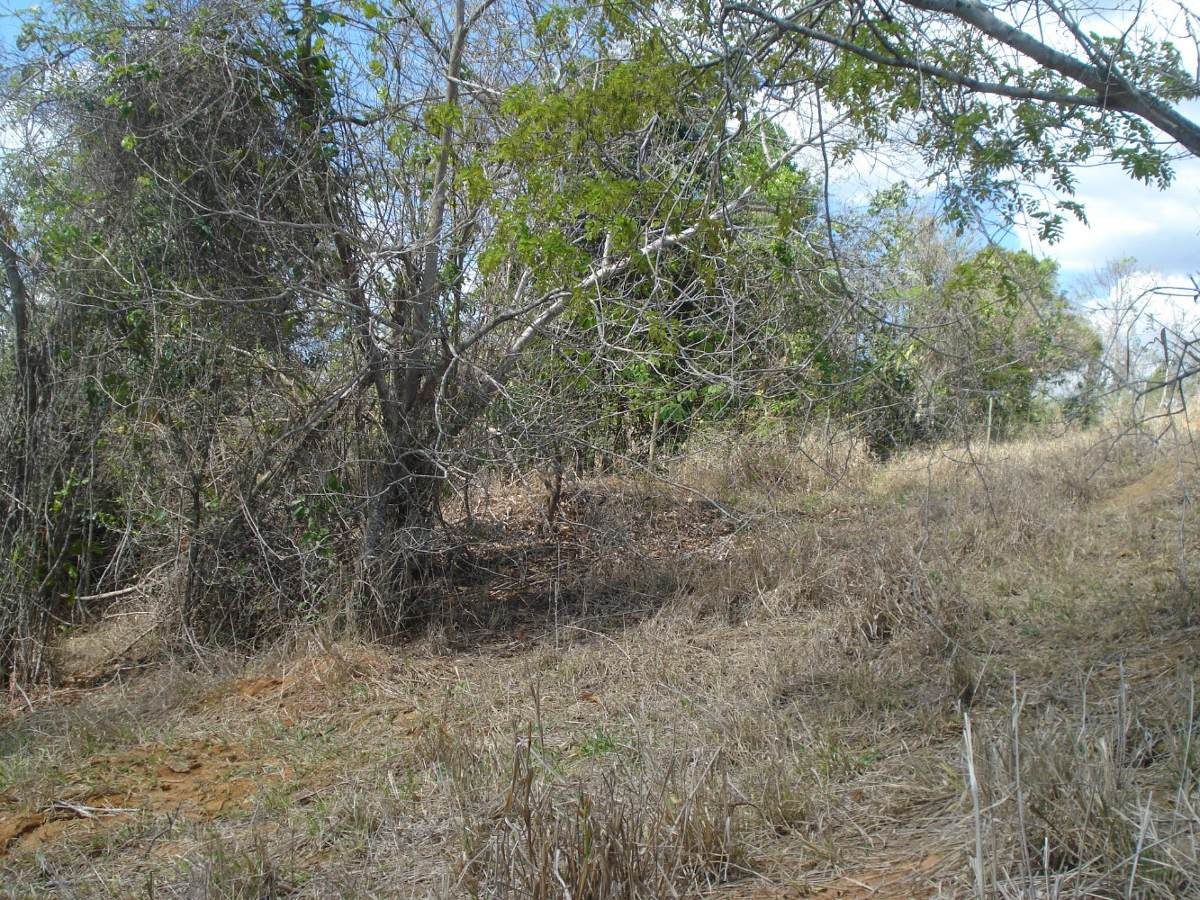 sitio 02 hectares semi-plano a 30 minutos de ipatinga