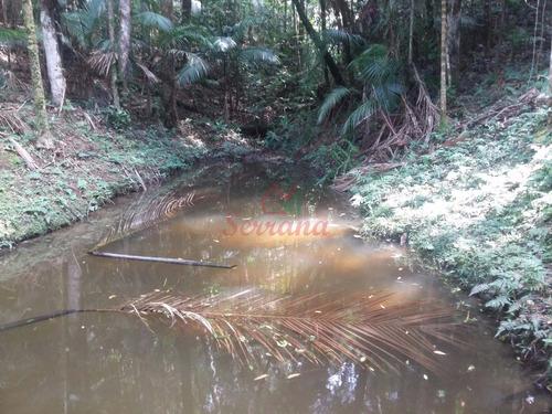 sítio 13 alqueires rico em água em juquitiba