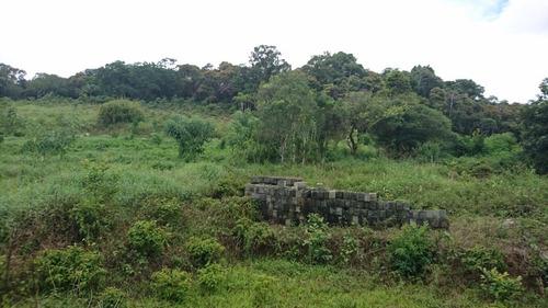 sitio - 1583 - 33659138