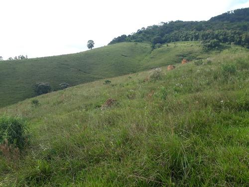 sítio 25 hectares baependi , área com perfil para plantio de oliveiras. - 502