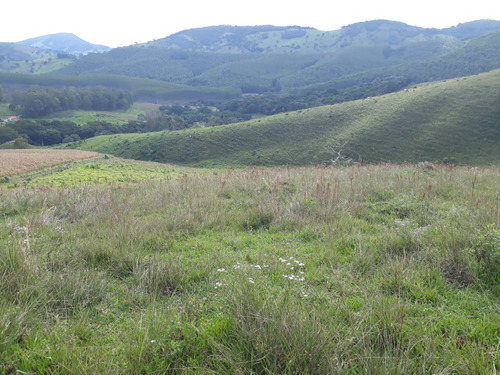 sítio 25 hectares baependi , área com perfil para plantio de oliveiras. - 5078