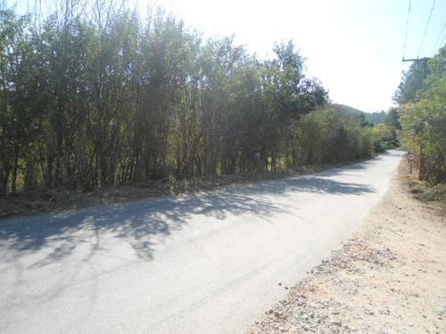 sítio 8 alqs, frente p/rodovia, excel p/ haras ou loteamento
