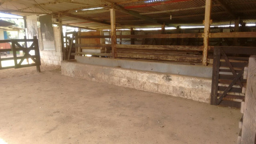 sítio 8 alqueires para pesqueiro em paraibuna - 507