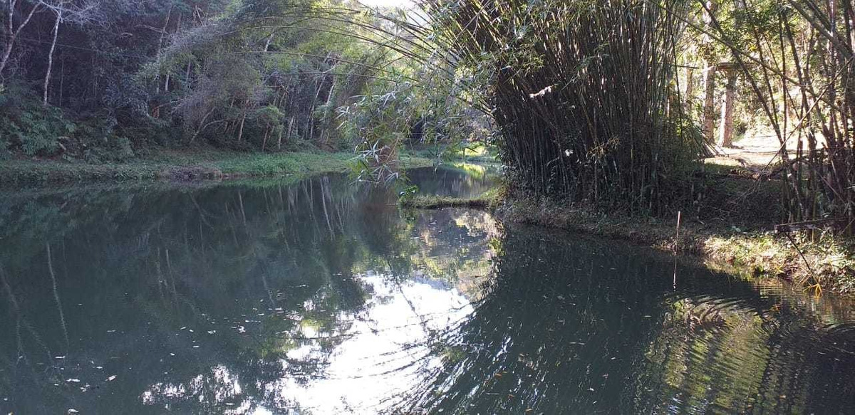 sítio a 1,5 km do centro com 10 alqueires lagos nascente rio