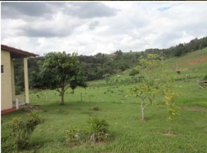 sítio a venda com 12 hectares em morungaba/sp - 1018