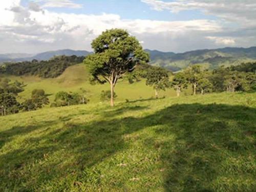 sítio a venda  com 91 hectares em camanducaia/mg - 1030