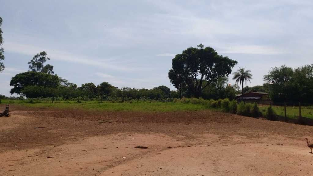 sitio a venda em mogi guaçu-sp - 1151