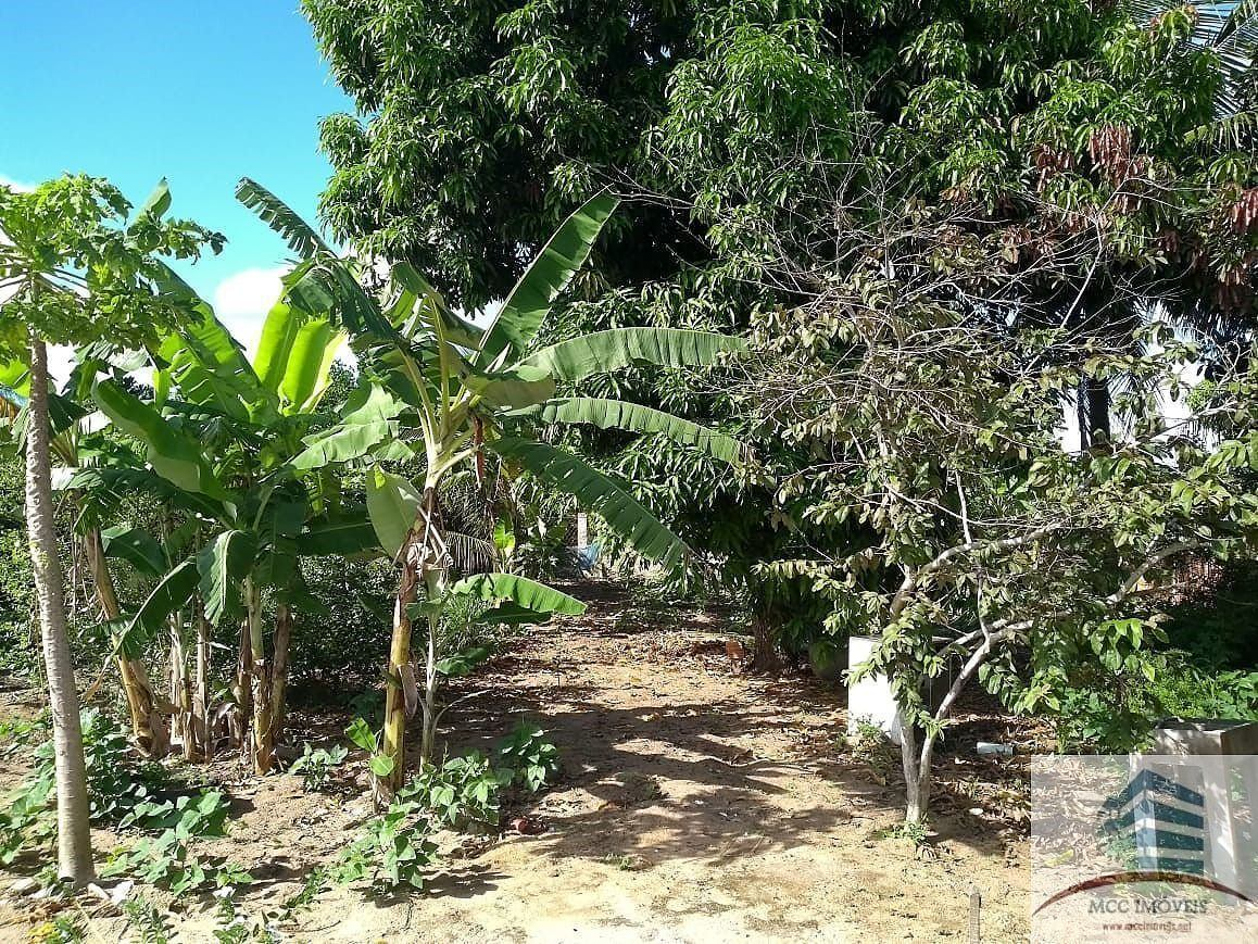 sítio a venda no povoado riacho do feijão