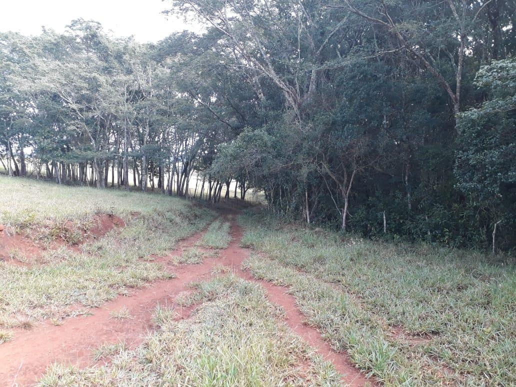 sítio alto padrão no sul de minas, com 13 hectares, casa muito boa com 4 quartos , bom de água , apenas 02 klm de terra, 07 klm de baependi. - 520