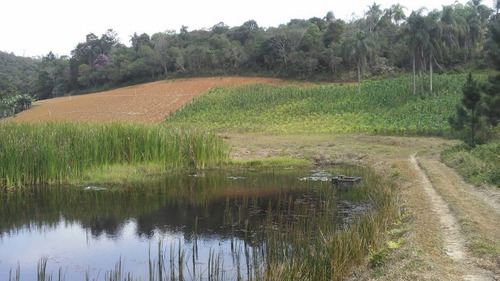 sitio área plantio/sede/lagos/lazer/moradia/ref: 04722