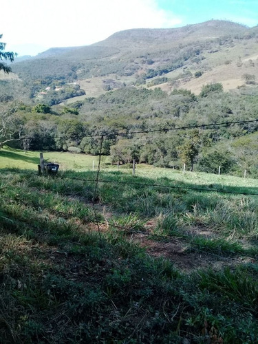 sítio bairro gamarra em baependi sul de minas , com 43 ha , bom de água , 90 % mecanizável , área ideal para plantio de oliveiras. s - 353