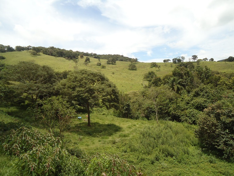 sítio bairro são pedro em baependi mg, com 46 ha , bom de água , 15 klm de baependi. - 273