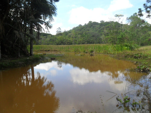 sítio bem localizado 2 nascentes linda queda d' água
