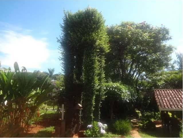 sítio / chácara para venda em igarapé, condominio fazenda solar, 3 dormitórios, 1 suíte, 2 banheiros, 5 vagas - sitio08_1-1120190
