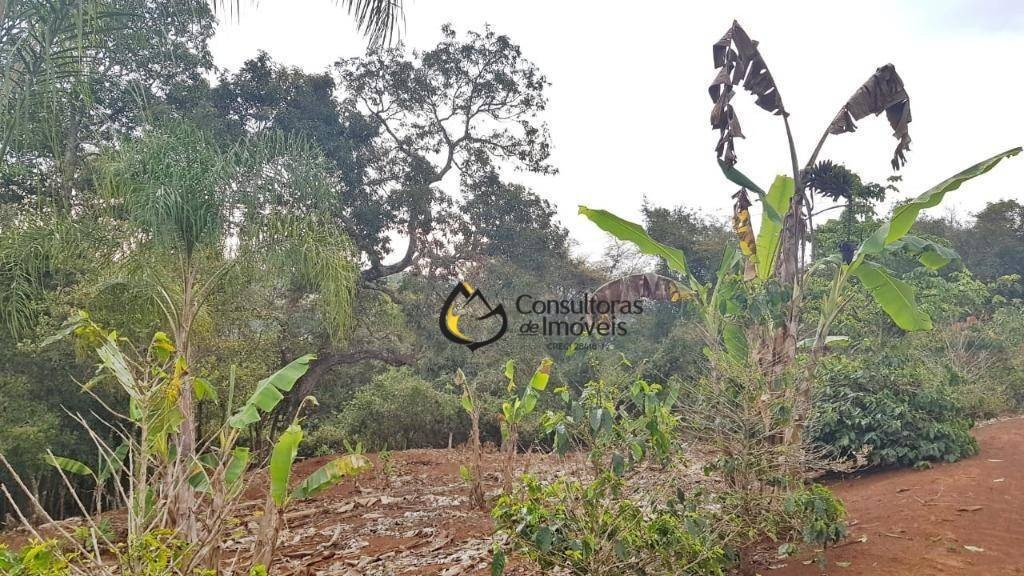 sítio com 1 dormitório à venda, 22000 m² por r$ 320.000,00 - zona rural - jacutinga/mg - si0001