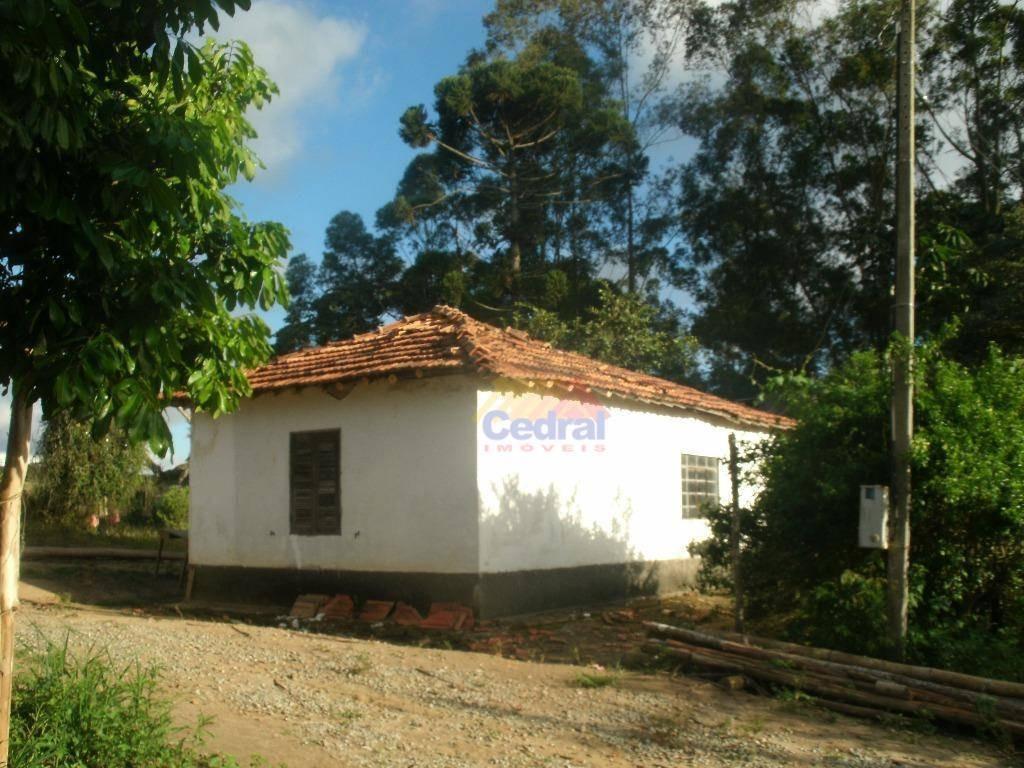 sítio com 1 dormitório à venda, 73000 m² por r$ 638.000,00 - cézar de souza - mogi das cruzes/sp - si0012
