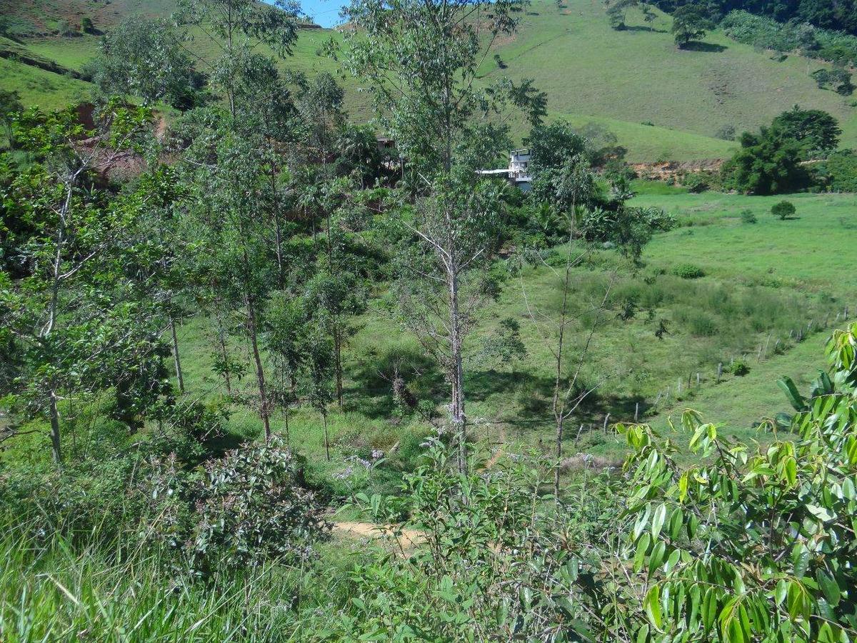 sitio com 10.500,00 m² em cachoeira alta em alfredo chaves - 2305