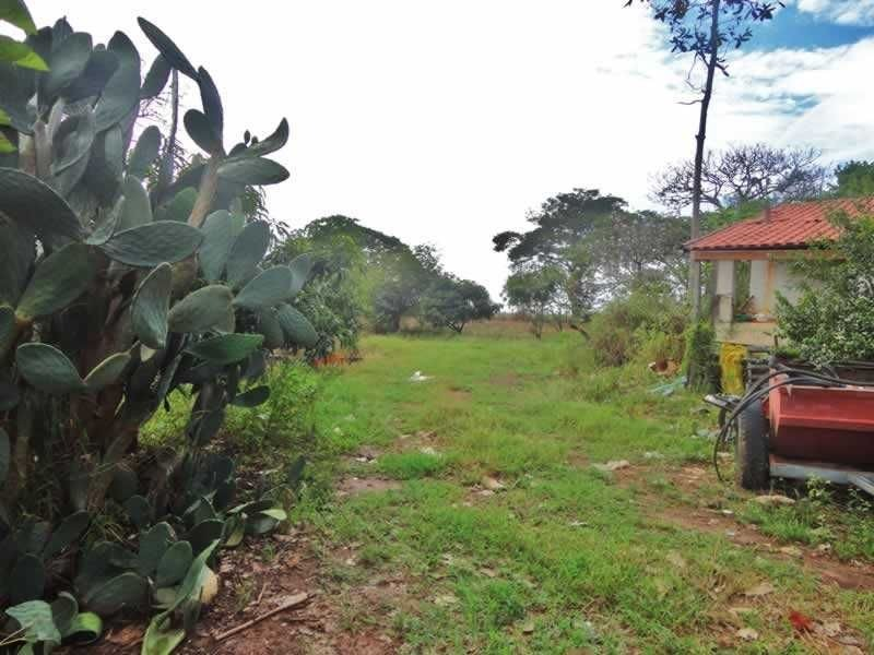 sítio com 19 hectares entre campinas e mogi mirim - 7452