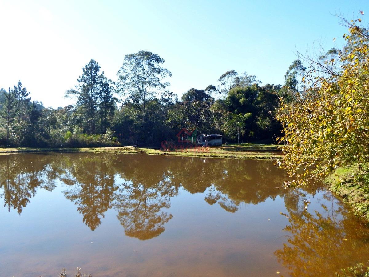 sítio com 2 lagos cheios de peixes casa com 4 quartos