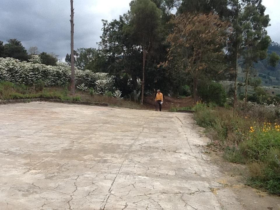 sítio com 2 quartos para comprar no vila nova em manhuaçu/mg - 162