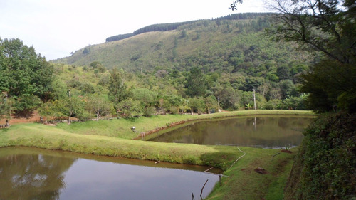 sítio com 24ha, 5 lagos, córrego, nascentes, paraíso natural