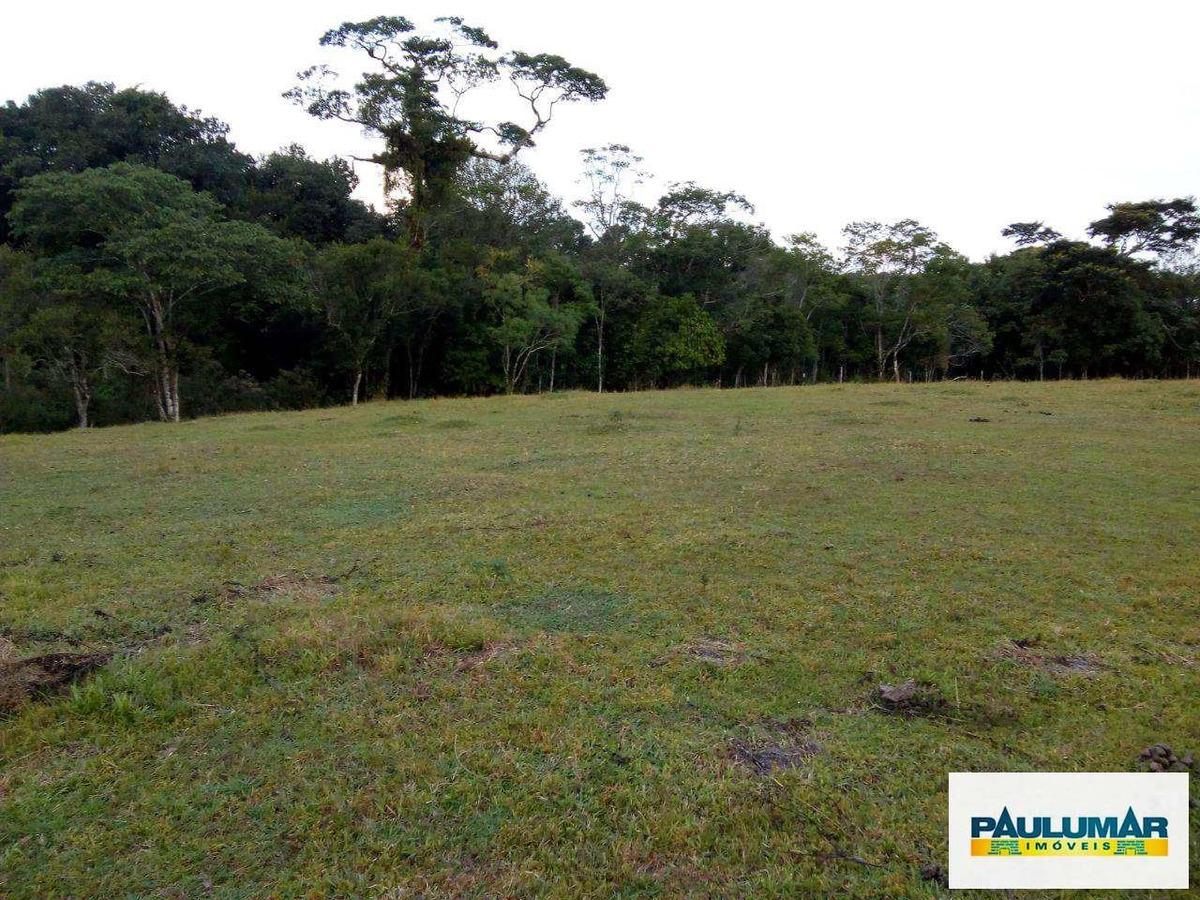 sítio com 3 dorms, agenor de campos, mongaguá - r$ 3 mi, cod: 827950 - a827950