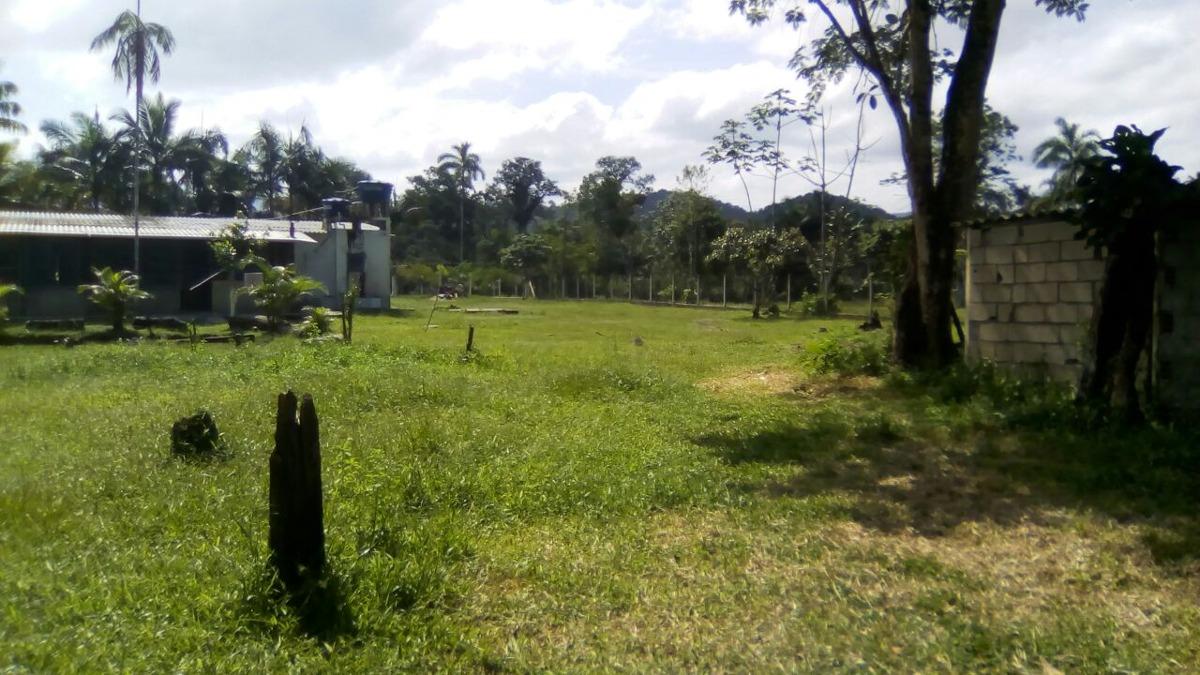 sítio com 30.000 m² em itanhaém/sp