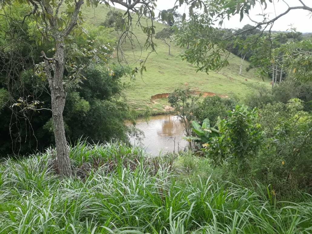 sitio com 40 hectares no sul de minas, casa com 03 quartos - 521
