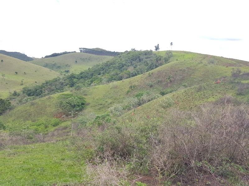 sítio com 6 alqueires as margens da represa em jacareí-sp - st02 - 33300730