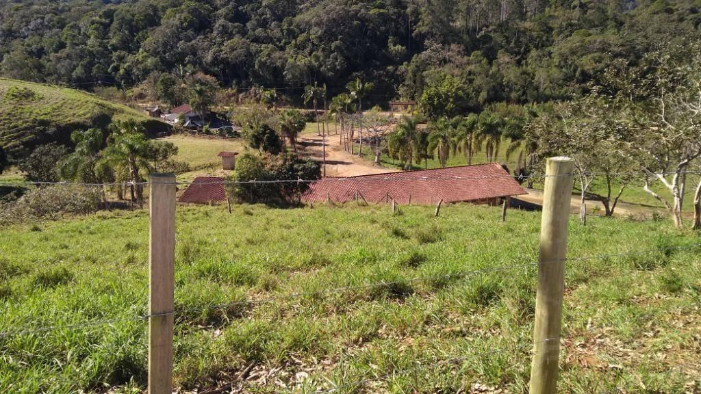 sítio com 8 dormitórios à venda, 480000 m² por r$ 4.000.000 - arraial d'ouro - gaspar/sc - si0021