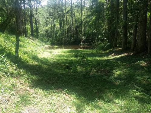 sítio com 9 alqueires lago riacho nascente pomar