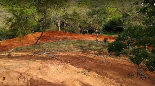 sítio com água nascente em paraibuna - 602