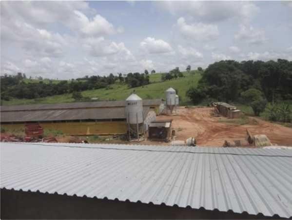 sítio com estrutura pronta para avicultura com 8,5 hectares em itapira/sp - 1041