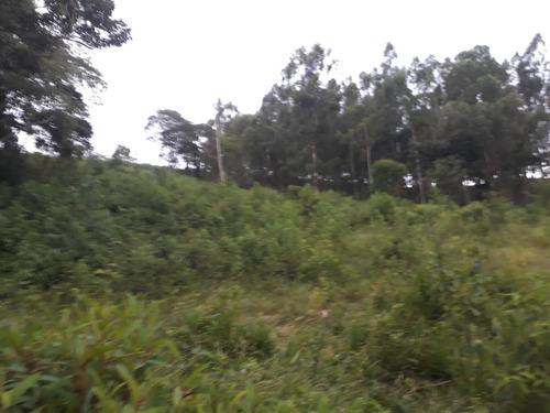 sítio com eucalipto   07  klm de baependi 12 ha - 402