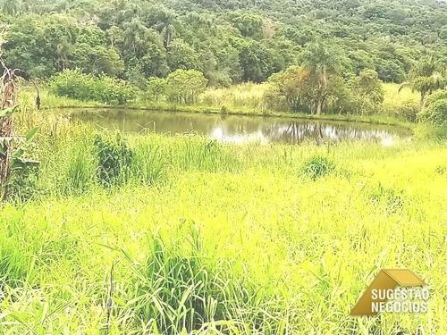 sítio com lago e peixes mais rio nos fundos - 2613