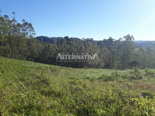 sítio da localidade de ribeirão pinheiro - 9147