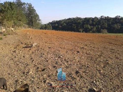 sítio de 3,5 alqueires em alambari - sp - 01248-1