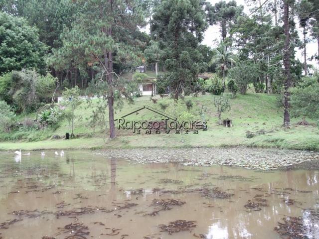 sítio em ibiúna / 1993