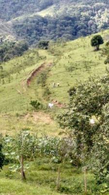 sítio em pedro de toledo à 150km de são paulo - ref 3634