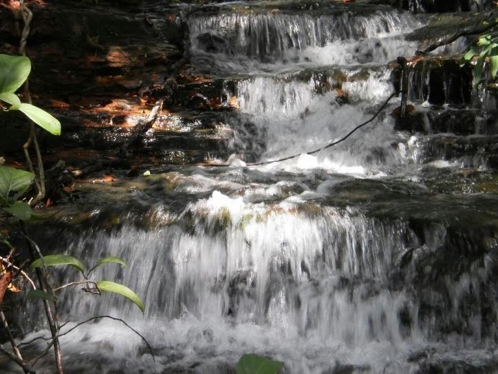 sitio em ponte alta - to, p/ pecuária e ecoturismo  - 465
