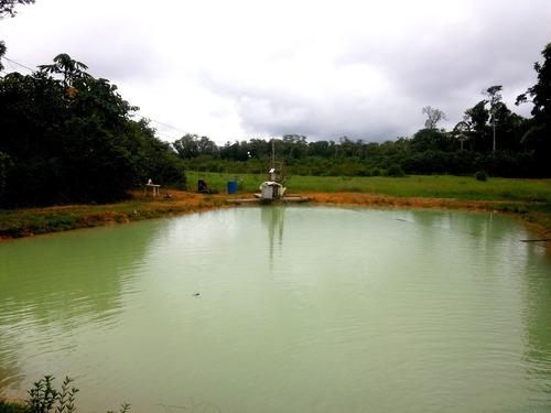 sitio em presidente figueiredo na estrada de balbina kl 41 - 32169