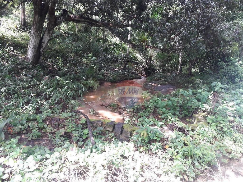 sítio em rio formoso perto da cidade - si0001