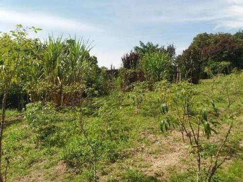 sítio em sorocaba, no bairro turvinho, ref. 0940 m h