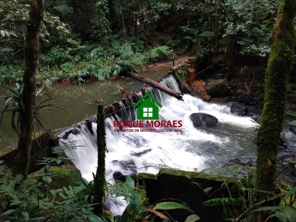 sítio juquitiba 87000m² ribeirão cachoeira nascente ref:0124