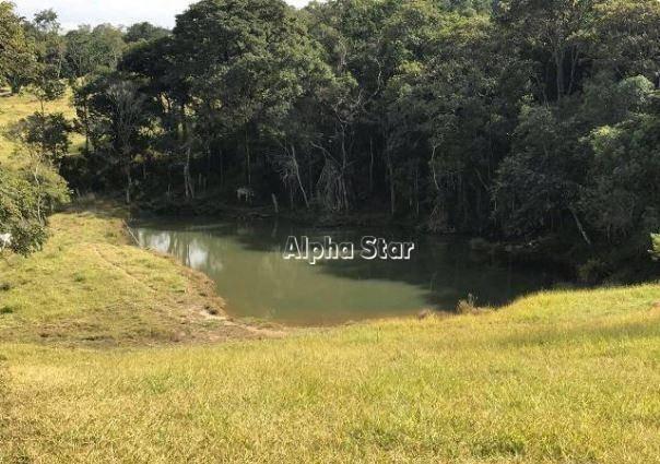 sitio maravilhoso, excelente localidade, verde preservado, venda - douradinho - piedade/sp - si0002